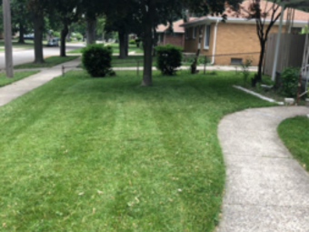 Yard mowing company in Charter Township Of Clinton, MI, 48035