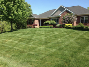 Yard mowing company in Chicago, IL, 60623