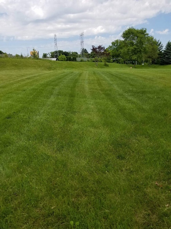 Yard mowing company in Roselle, IL, 60172