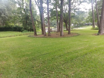 Yard mowing company in Tallahassee, FL, 32305