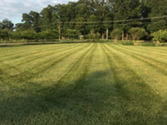 Yard mowing company in Germantown, MD, 20876