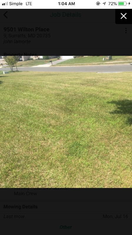 Yard mowing company in Silver Spring, MD, 20906