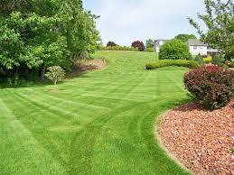 Yard mowing company in Gary, IN, 46408