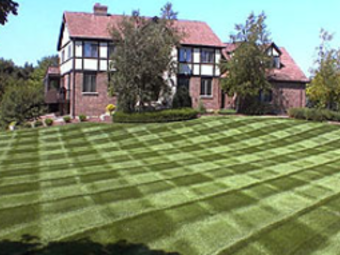 Yard mowing company in Lancaster, SC, 29720
