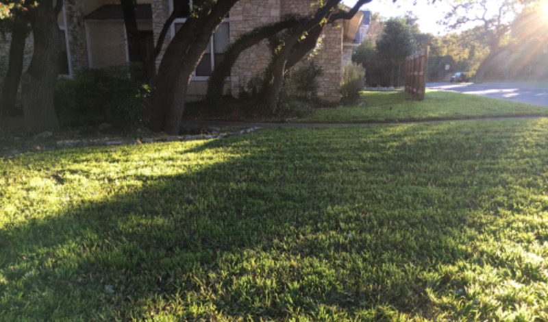 Yard mowing company in San Antonio, TX, 78224