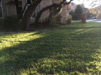 Yard mowing company in San Antonio, TX, 78002