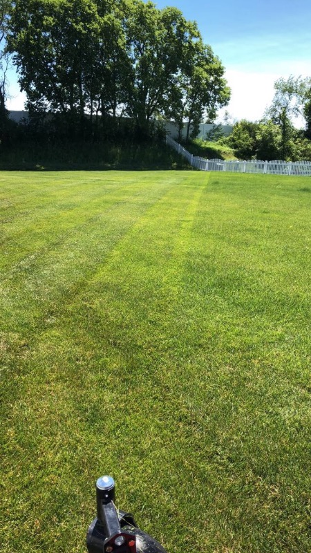 Yard mowing company in Lansing, IL, 60438