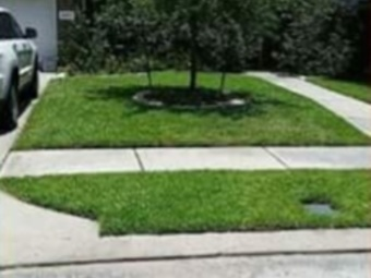 Yard mowing company in Houston, TX, 77093