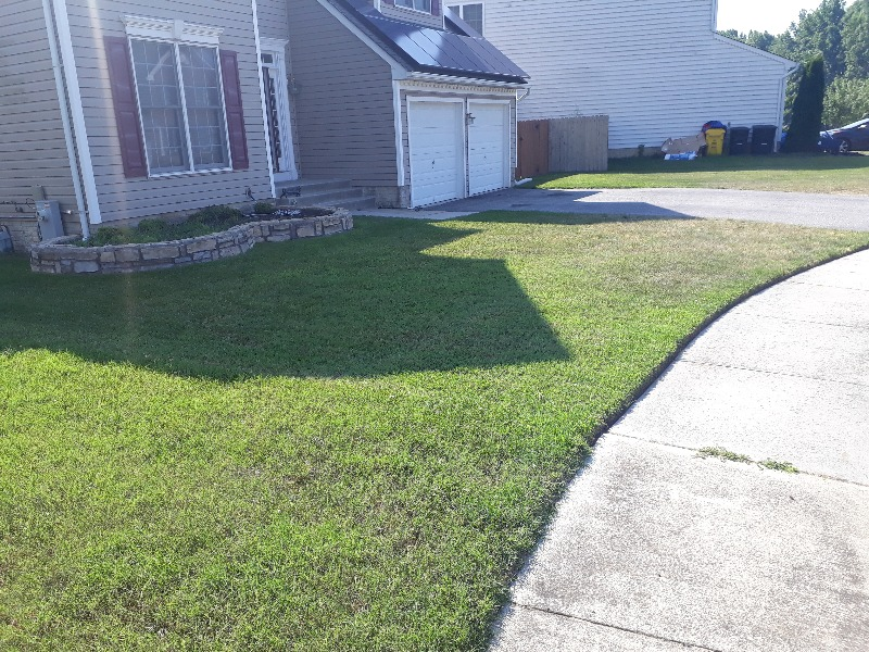 Yard mowing company in Essex, MD, 21221