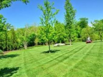 Yard mowing company in Oak Lawn, IL, 60453