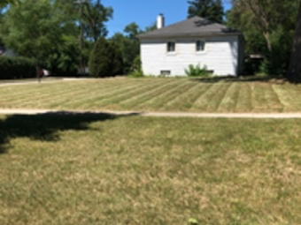 Yard mowing company in Detroit, MI, 48235