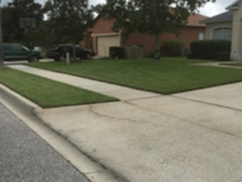 Yard mowing company in Orlando, FL, 32811