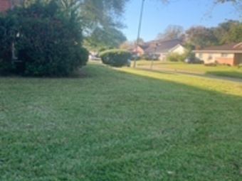 Yard mowing company in Houston, TX, 77022