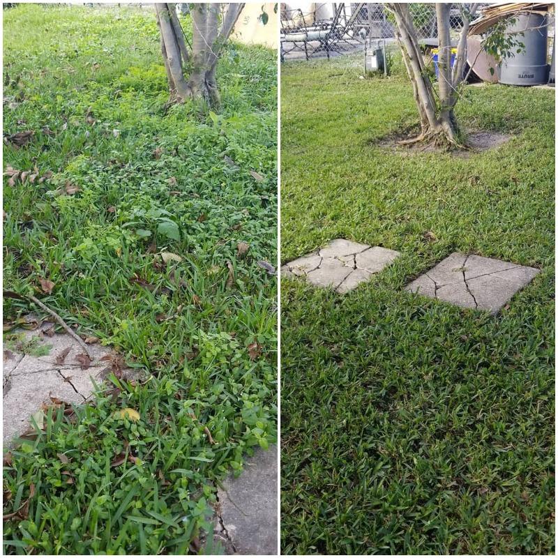 Yard mowing company in Delray Beach, FL, 33444