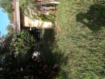 Yard mowing company in Miami, FL, 33150