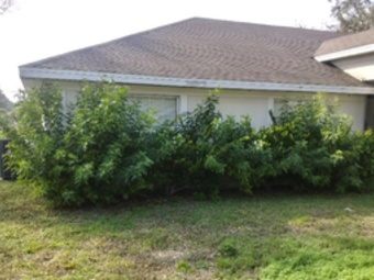 Yard mowing company in Palm Bay, FL, 32907