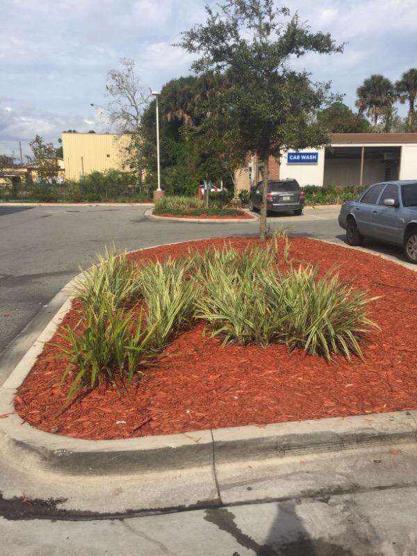Yard mowing company in Palm Coast, FL, 32137