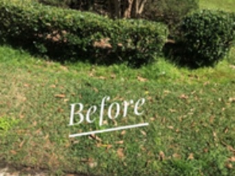 Yard mowing company in Summerville, SC, 29483