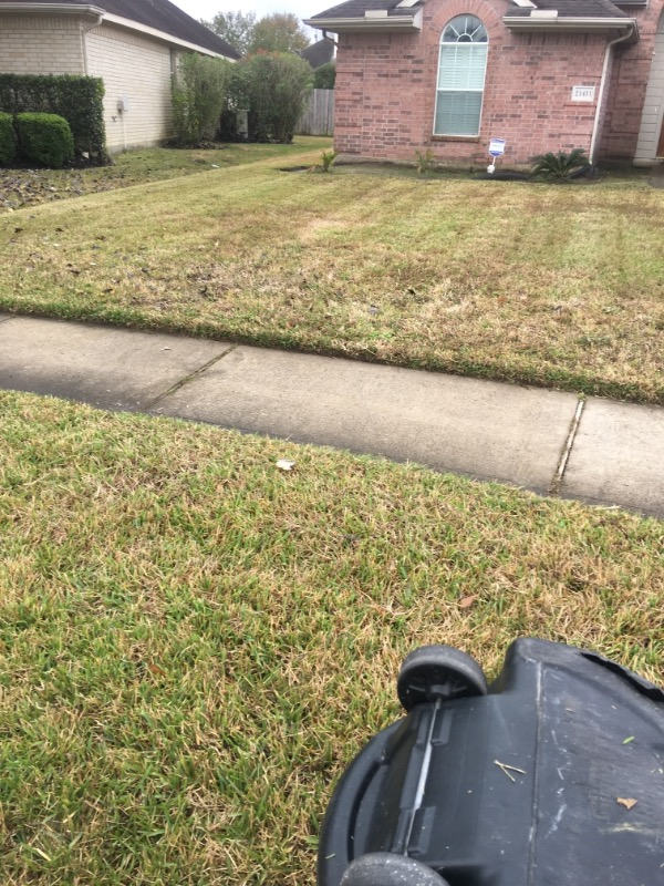 Yard mowing company in Houston, TX, 77068