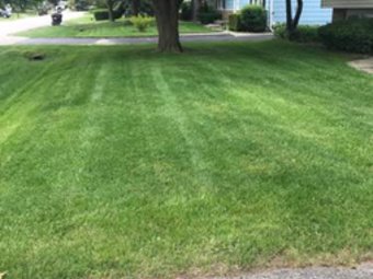Yard mowing company in Beach Park, IL, 60083