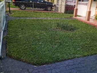 Yard mowing company in Fort Lauderdale, FL, 33315