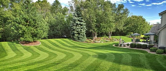 Yard mowing company in Indianapolis, IN, 46238