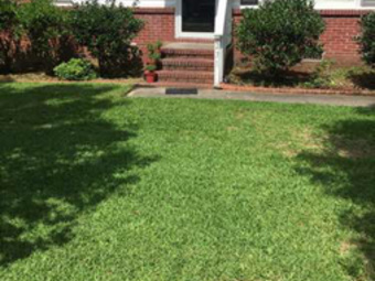 Yard mowing company in Goose Creek, SC, 29445