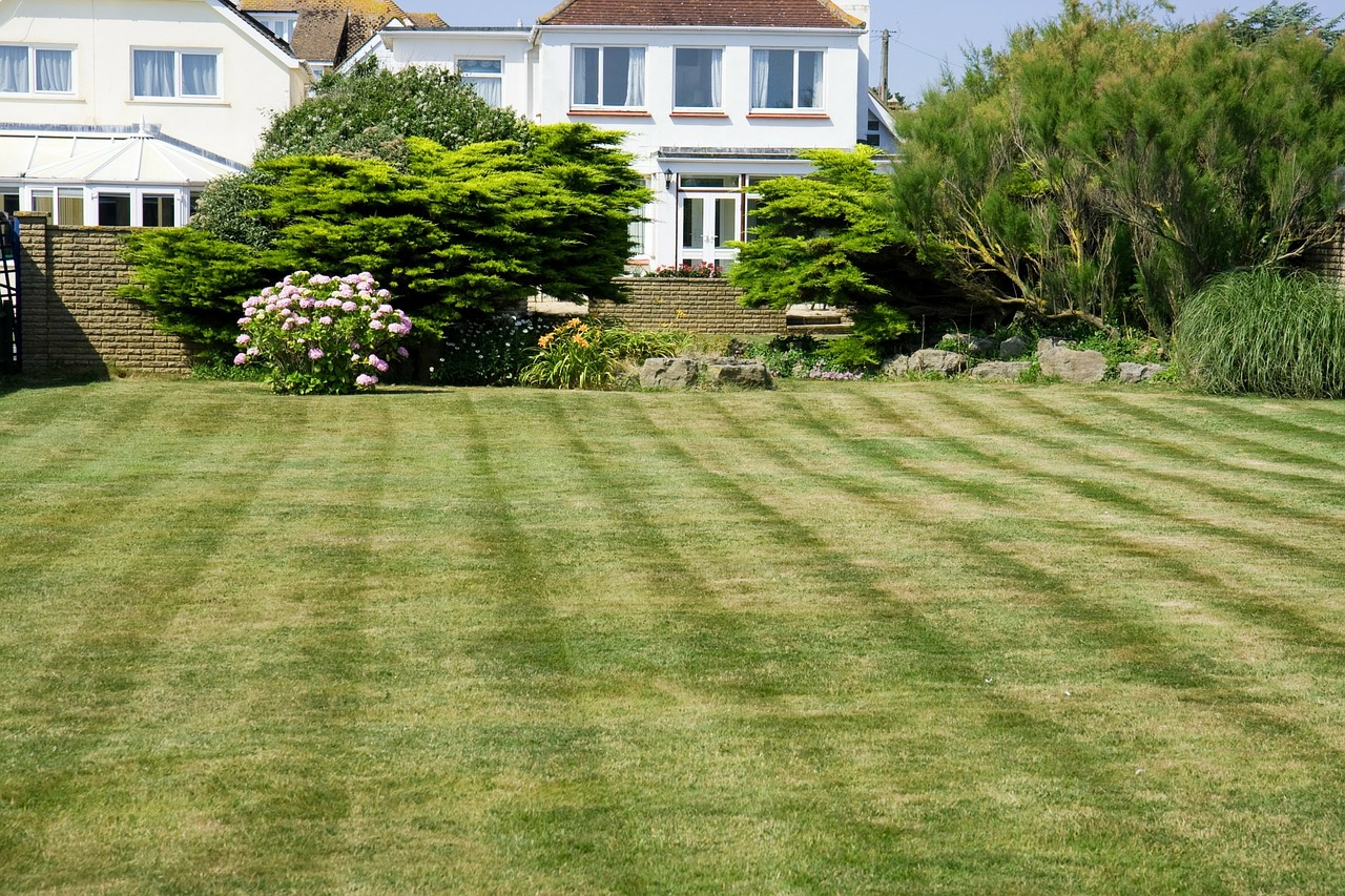 Yard mowing company in Holley, NY, 14470