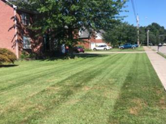 Yard mowing company in Murfreesboro, ACUNETIX, Acunetix