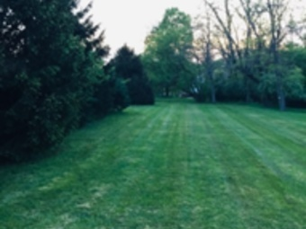 Yard mowing company in Cincinnati, OH, 45248