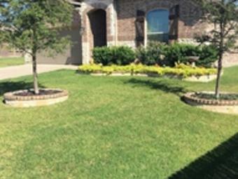 Yard mowing company in Arlington, TX, 76001