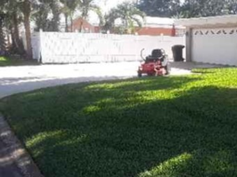 Yard mowing company in St. Petersburg, FL, 33714