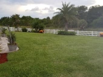 Yard mowing company in Palm Bay, FL, 32908