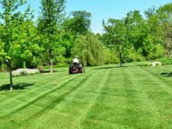Yard mowing company in Port Charlotte, FL, 33953