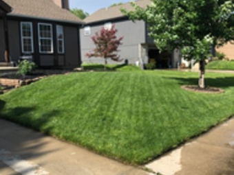 Yard mowing company in Basehor, KS, 66007