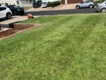 Yard mowing company in Vista, CA, 92083