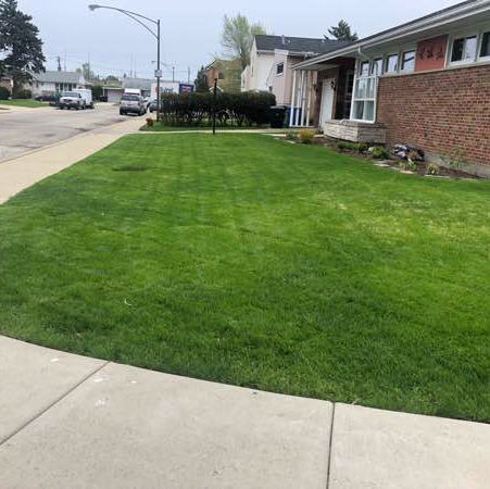 Yard mowing company in Chicago, IL, 60707