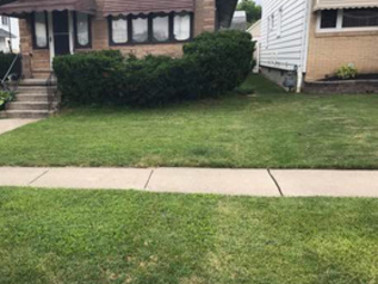 Yard mowing company in Buffalo, NY, 14218