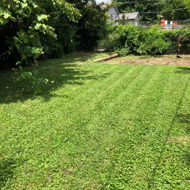 Yard mowing company in O'fallon, IL, 62269