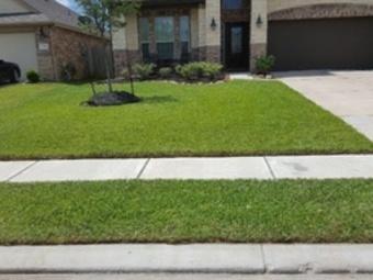 Yard mowing company in Rosharon, TX, 77583