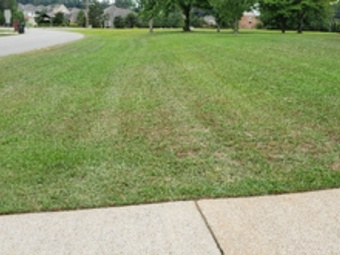 Yard mowing company in Huntsville, AL, 35810