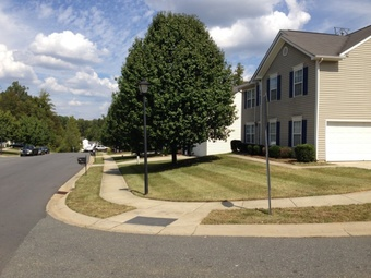 Yard mowing company in Charlotte, NC, 28226