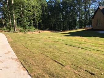 Yard mowing company in Holly Pond, AL, 35083