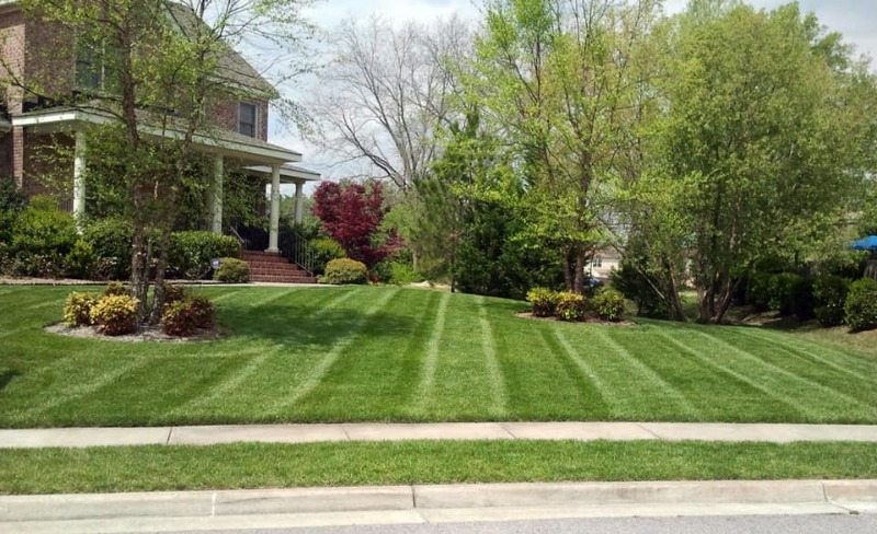 Yard mowing company in Omaha, NE, 68154