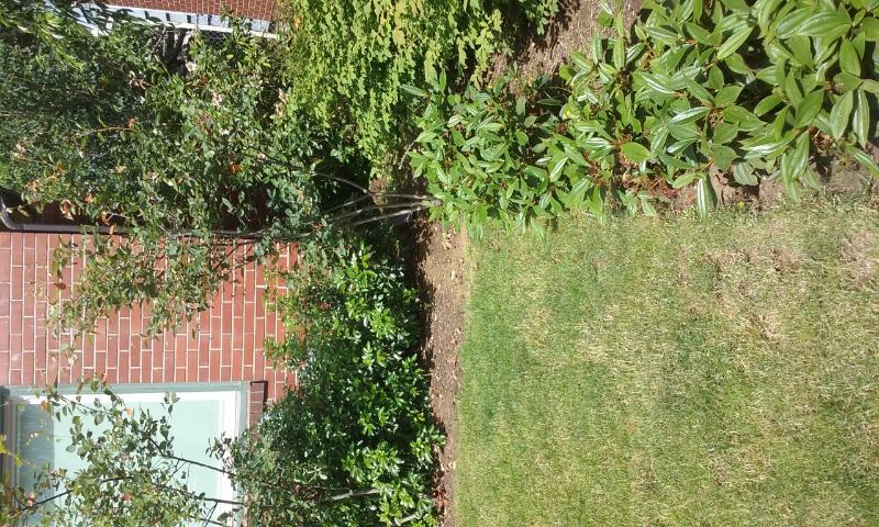 Yard mowing company in Tacoma, OR, 97230