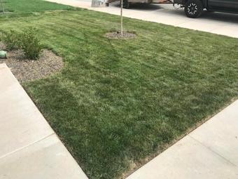 Yard mowing company in Boise, ID, 83709