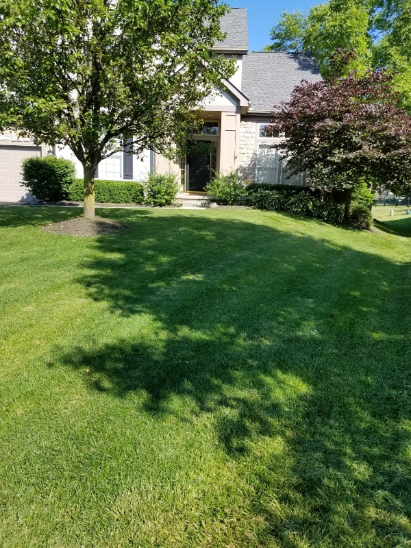 Yard mowing company in Gahanna, OH, 43230
