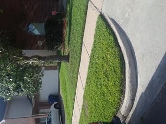 Yard mowing company in Houston, TX, 77045