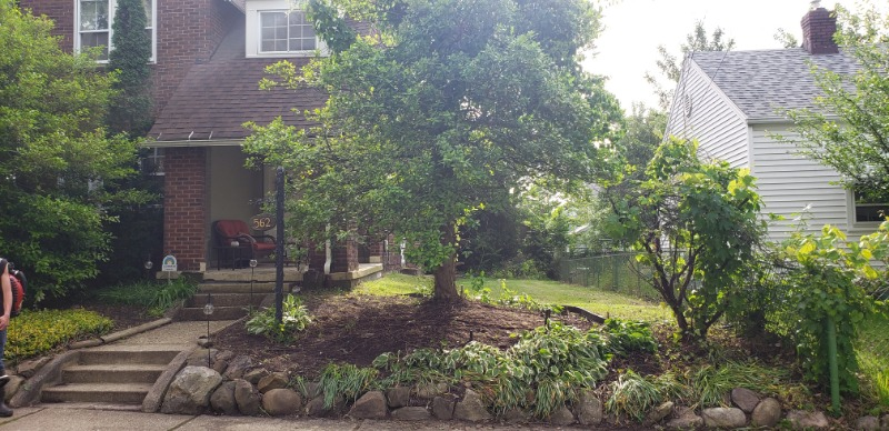 Yard mowing company in Akron, OH, 44306