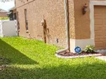 Yard mowing company in Tampa, FL, 33605